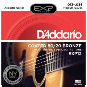 D'Addario EXP12 80/20 Guitar Strings 13-56