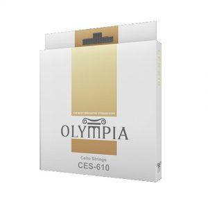 CSE-610