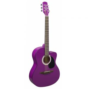 Brunswick Junior Auditorium - Purple Gloss