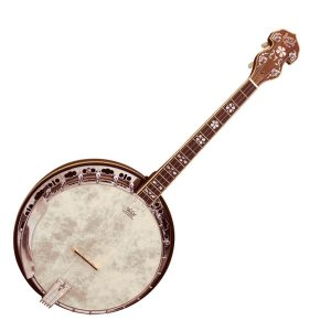 Barnes & Mullins BJ504BWGT Empress Tenor Banjo