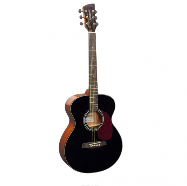 Brunswick BF200BK Folk Guitar Black