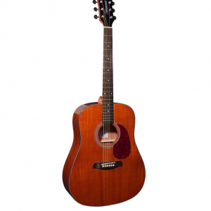 Brunswick BD200M Acoustic Dreadnought Mahogany